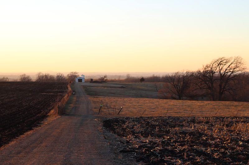 Farm_Driveway_near_Summit_of_White's_Hill_Outside_Shullsburg,_WI