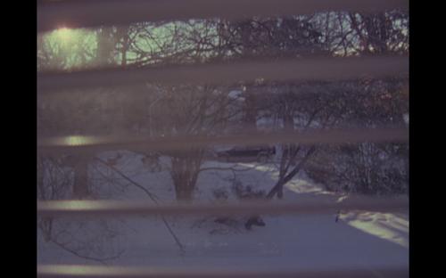 Screen shot 2014-02-26 at 10.41.56 AM
