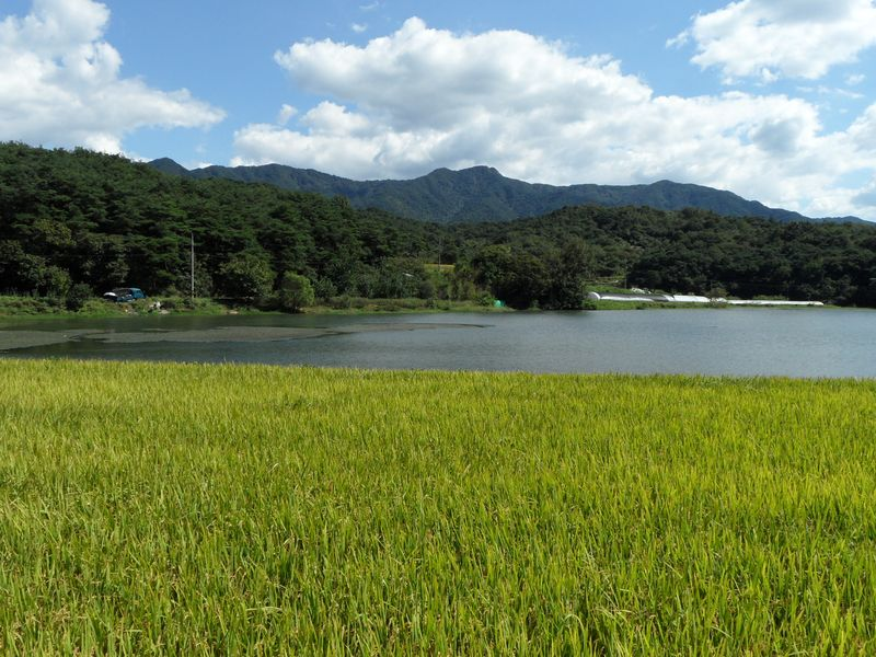 Namwon_Countryside_-_Suji_Myeon_-_2010(1)