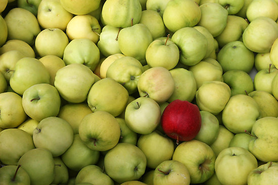 Odd Apple Out